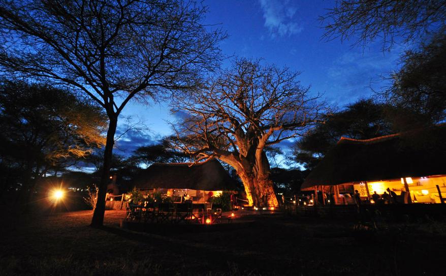 Swala Camp main area