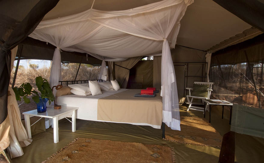 Standard Double Tent - Bed
