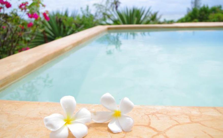 Pool Spa